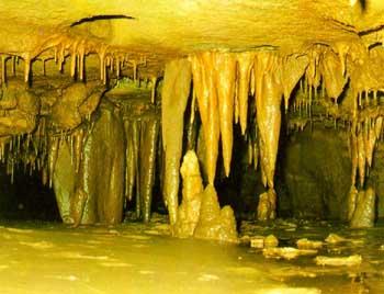 천곡 천연동굴(동해시)