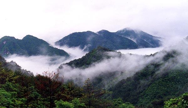 가리왕산 (정선읍 회동리 1,560.6m)